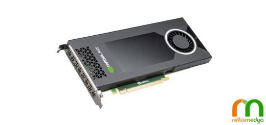 NVS 810